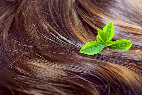 Diagnostic personnalisé de la chute de cheveux à Mulhouse